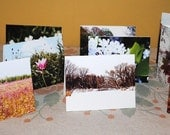 One Dozen, All Occasion, Photo Greeting Cards