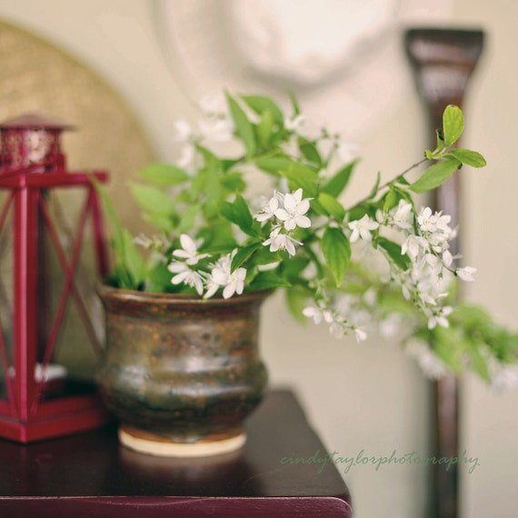 "Fine Art Photography, Still Life Photography, Coastal Home Decor, Summer Cottage, ""Lake Days"", fine art print"