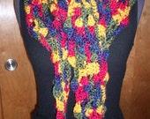 Multicolor Long Scarf