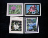 Nature photo notecards set of 4
