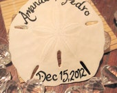 Handwritten Calligraphy Beach Wedding Favors Sand Dollars with Bride and Grooms Name, and Wedding Date- Other Options Avail