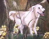 Dog on path print 8 by 10
