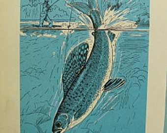Vintage Blue Fish Book Plate Paper Illustration For the Fisherman - Arctic Grayling