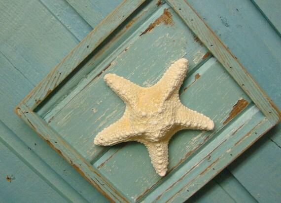 Weathered Turquoise White Knobby Starfish Plaque Art