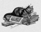 Cat Sleeping on Stack of Books Vintage Illustration Instant Download Digital Download for Iron On Transfer for Burlap, Tea Towels 636