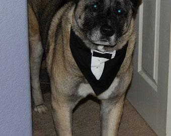 Large Designer Pet Bandana Wedding Groom Tuxedo Large Dog Tux