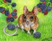 Black Berry Mouse 9 x  12 Art Print