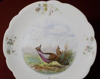 Floral Fowl Luncheon Dessert Tea Plate