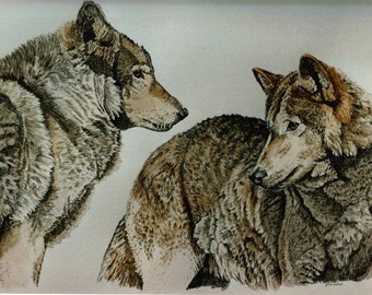 Hand-colored Wolf Print, Distant Voices
