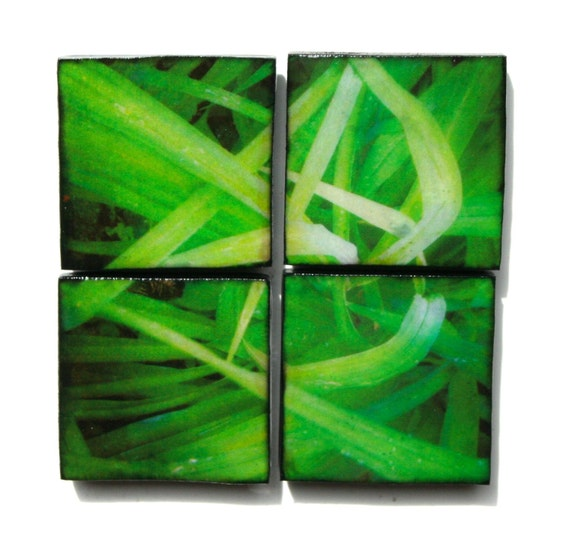 Hipstamagnets: Square Tile Resin Photographic Magnets (green grasses)