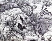 "Sea Life Art Print - Black and White Decor -  Ink Drawing Print 8x10  ""Underneath"" - Ocean Wall Art"