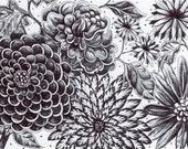 "Black and White Flowers - Original Ink Drawing - Moonlight Garden - HAND DRAWN 5x7"" Flower Art - Home Decor"