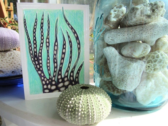 Coral Do Mar, Sea Urchin Stationery Set - Printed Cards - Mint Green Purple Sea Coral  - 4x5 art note cards