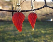Leaf it to Me autumn leaf earrings with french hook