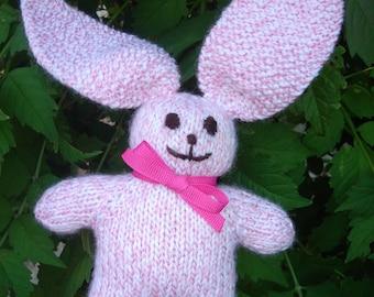 Mini Bunny Rabbit