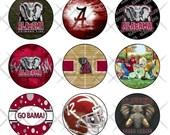 Alabama Crimson Tide Digital Image Collage