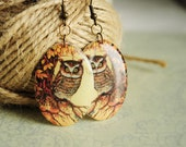 Owl earrings from resin - brown earrings, gift idea for her for girl, rustic jewelry, cottage, gray, bird, nature - made to order