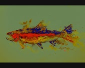 RAINBOW TROUT Abstract Fish Print