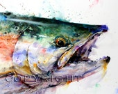 SOCKEYE SALMON Watercolor Print by Dean Crouser