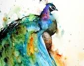 PEACOCK Large Watercolor Print by Dean Crouser