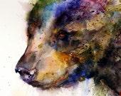 BLACK BEAR Watercolor Print By Dean Crouser - DeanCrouserArt