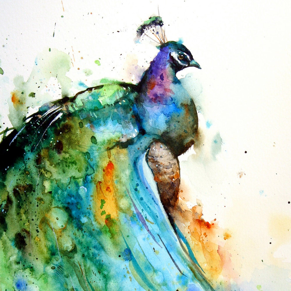 PEACOCK Large Watercolor Print by Dean Crouser by ...