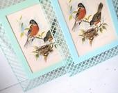 Vintage Bird Wall Hangings- Set of Two Seafoam and Robin's Egg Blue Plastic Framed Art Prints