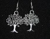 Dreaming Tree Earrings in Silver