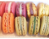 Macaron Love - French Macaroons, food photography, cute kitchen decor, nursery decor french macarons - 8x12 Original Fine Art Photograph