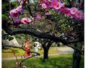 Kimonos and Spring Blossoms - Japanese decor cherry blossoms sakura plum blossoms tea garden Kyoto, Japan, 8x8 Original Fine Art Photograph