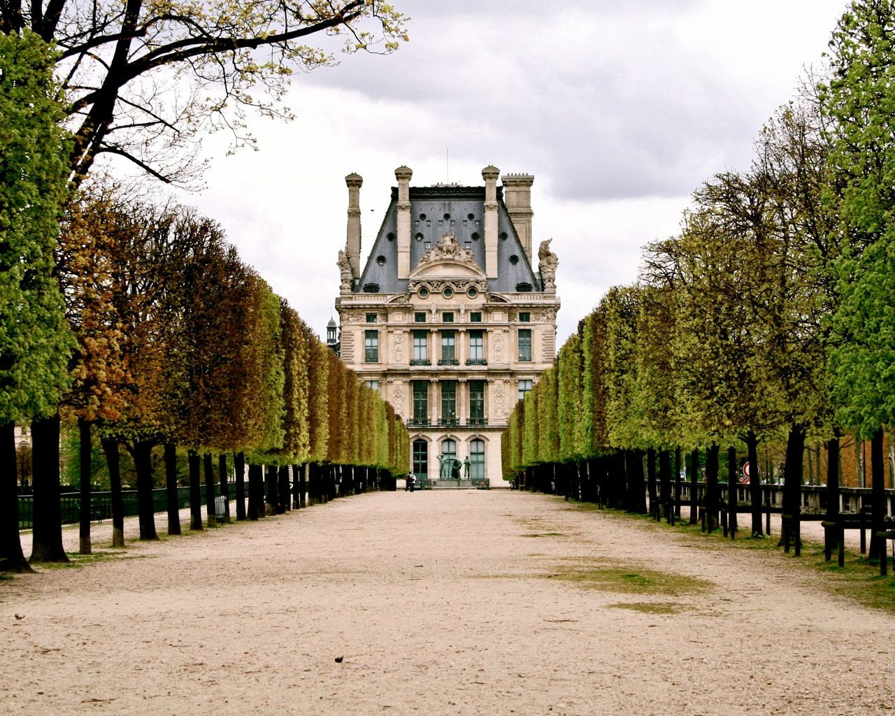 paris photography jardin des tuileries photograph by vitanostra. Black Bedroom Furniture Sets. Home Design Ideas