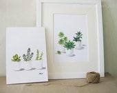Succulent Watercolor Print Set - Any TWO Succulent Art, Succulent Print / 8x11 Botanical Prints, Modern Home Decor