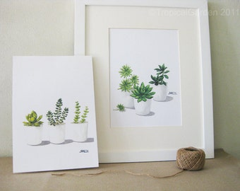 Succulent Watercolor Print Set - Any TWO Succulent Art, Succulent Print / 8x10 OR 8x11 Botanical Prints, Modern Home Decor