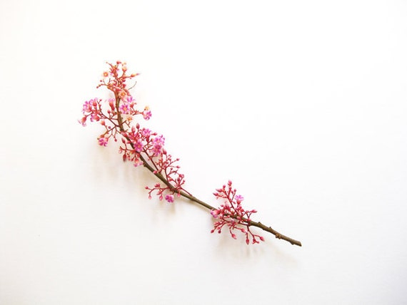 Blossom No.1 Minimal Photography - 8x10 Photo Print - Modern Home Decor