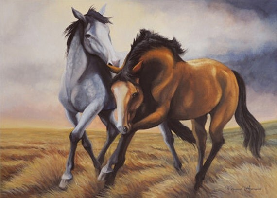 "Limited Edition 16 x 20 Fine Art Print ""Field of Dreams"""