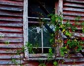 Waiting at Beannie's Window