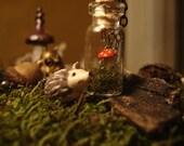 Tiny Woodland Terrarium Red Mushroom Necklace