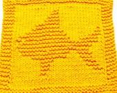 Knitting Cloth Pattern  - FISH  - PDF