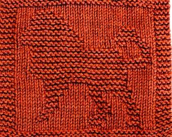 Knitting Cloth Pattern -  LION - PFD