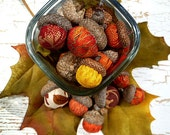 Fall Acorns,  Autumn Fall Harvest Thanksgiving Halloween Decor - Set of 24 in Stunning Autumn Colors