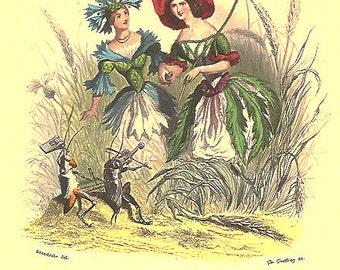 Reserved, Prints, Engravings, by J.J. Grandville, Les Fleurs Animees, Court Flora. Book Art, Books Illustrations