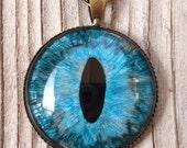 Brown and Blue Dragon Eye Pendant