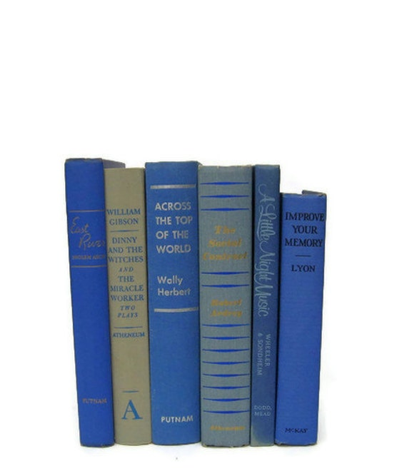Vintage Books Blue Tan Decorative Books  Photography Prop