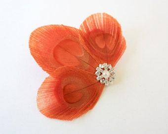 Sneaky - Orange feather hair clip / Peacock fascinator
