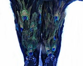 Peacock Feather Fairy Nymph Costume Knee High Boots 9M