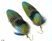 Parrot peacock feather earrings, blue, green, elegant, colorful - Leaves of Earth