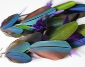 RESERVED - OOAK, long parrot feather earrings, colorful, blue, green, purple - Tropical Thunder