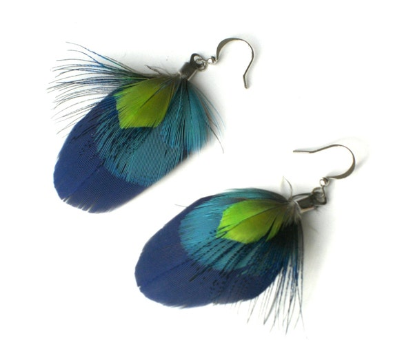 Parrot peacock feather earrings - Summer Shower