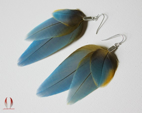 Blue feather earrings, yellow highlights, parrot feathers - Sun Ray Wings