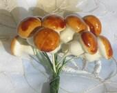 Mushrooms Little Brown Magic Mushrooms